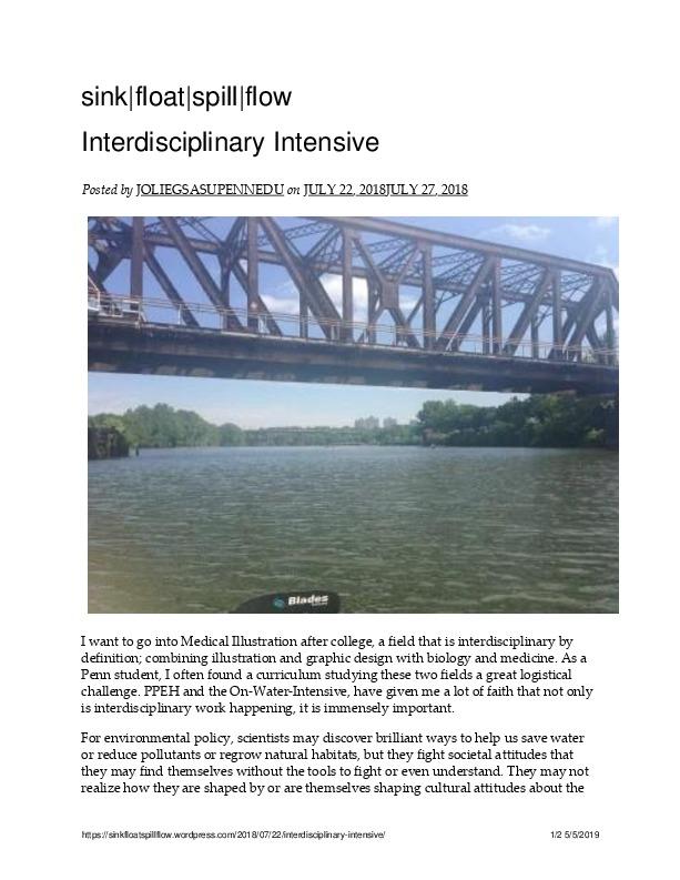 (Jolie Gittleman) Interdisciplinary Intensive – sink_float_spill_flow.pdf