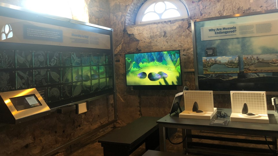 The freshwater mussel exhibit within Fairmont Waterworks