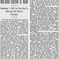 Daily True American Aug 17, 1905.png