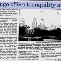Reading Eagle Oct 8, 1999.png