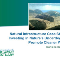 UPenn Mussels - Kreeger 12-1-17.pdf
